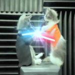 スター・ウォーズ/フォースの覚醒 猫動画